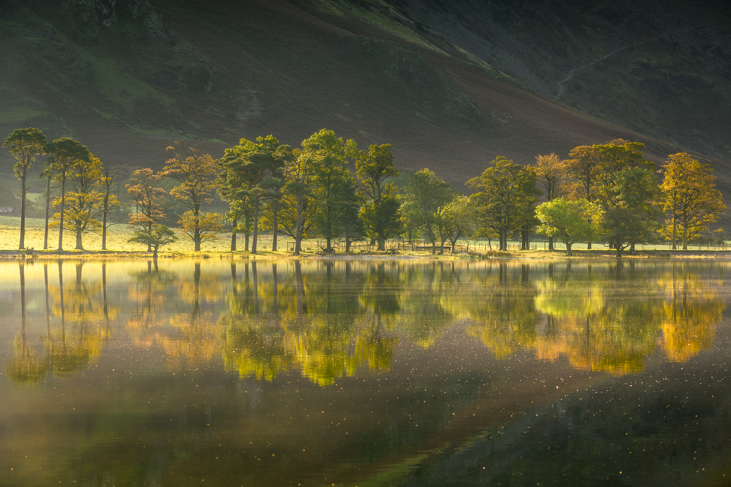 UK Landscapes - North